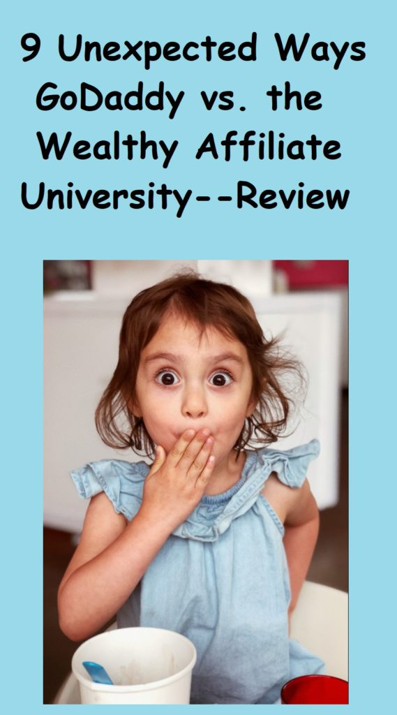 the wealthy affiliate university review